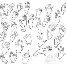 manos copia